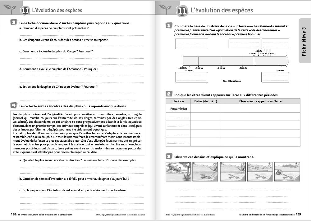 Sciences et technologie - fichier MDI